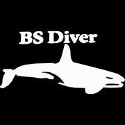 BS-Diver logo